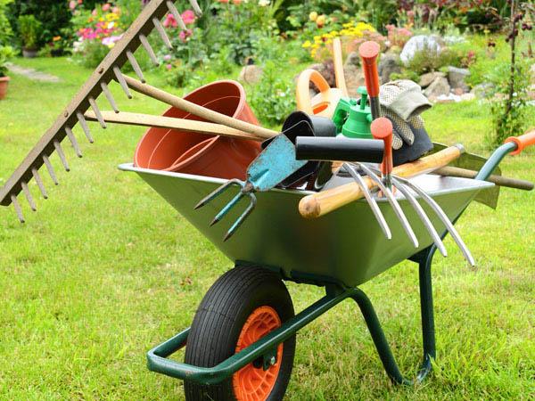 Kirivo online tutto per il giardino e il giardinaggio - Guida giardinaggio ...
